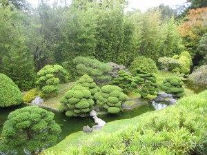 Japanese Tea Garden 4
