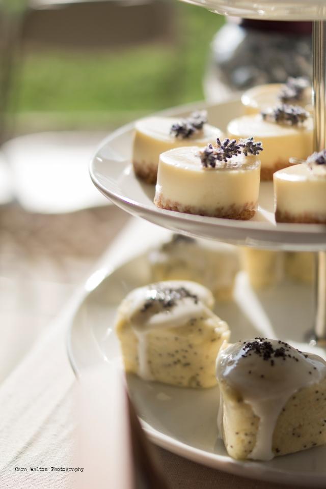vanilla-cheescakes-lps-cakelets
